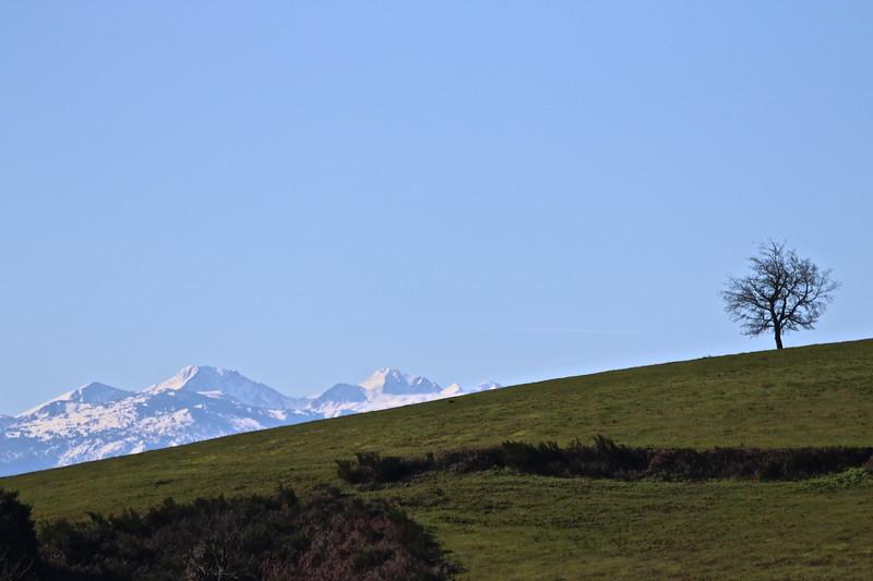 Entre landes et montagnes