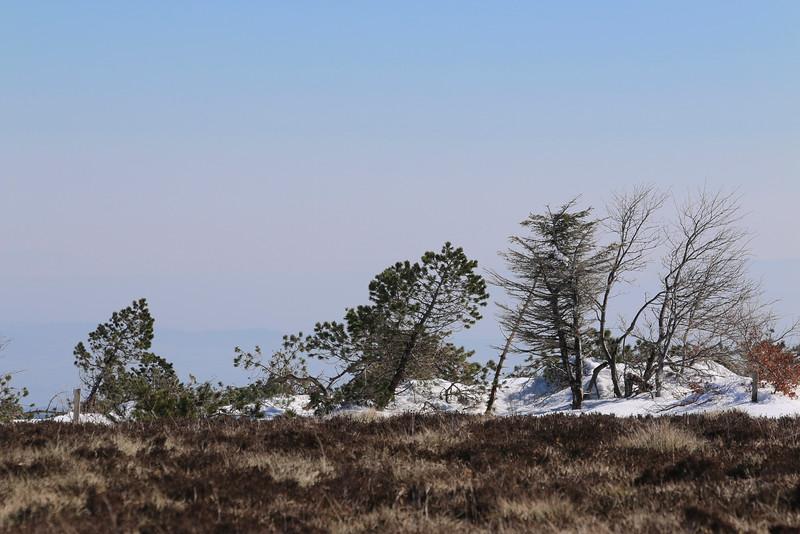 Landes, Pic de Nore