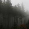 Brume en Montagne Noire