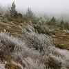 Aude en hiver