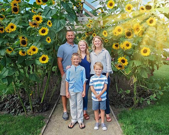 Stacy Family Sunflowers Sunrays 8x10