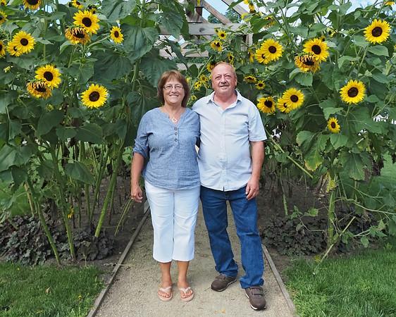 Sandy Roger Sunflowers 8x10