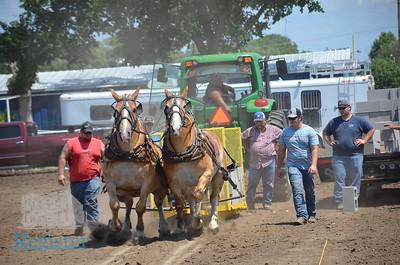 Terry Ellis Memorial Draft Horse Pull