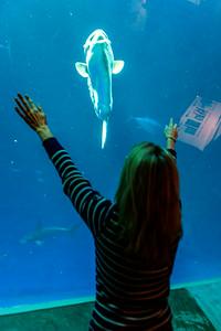 Christine calling the Mola