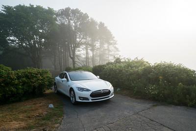 Tesla fog 07691