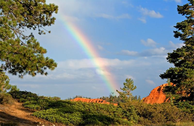 RainbowBryce