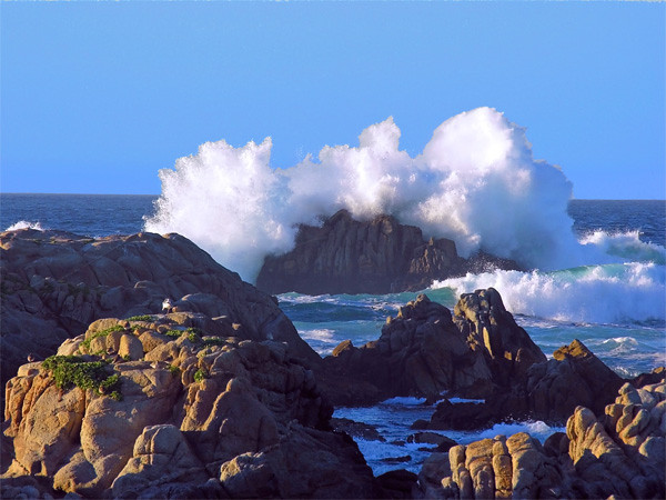 PacificWave
