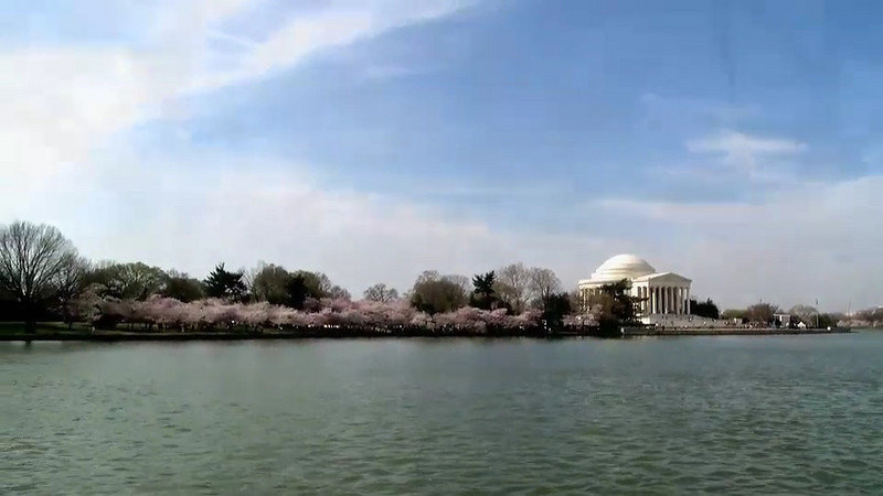 finalDC Cherry Blossom 160 second clip March 2008 a smug