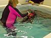 29 Dec 2010. Swimming. Copyright Peter Drury 2010<br /> ISO 6400, f7.1, 1/60s, f/l 26mm.