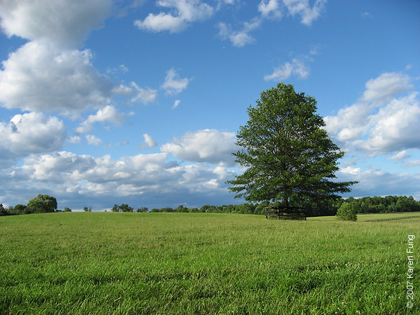 Blue Chip Farm, Ulster County, NY