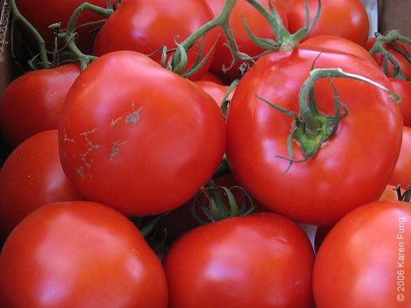 Nature morte avec tomates
