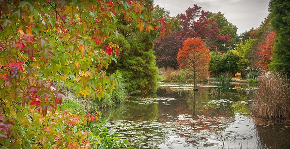 Sir Harold Hillier Gardens, Romsey