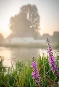 Chilbolton Common