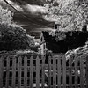 A black and white infrared image of an historical ruin on Virginia's Eastern Shore