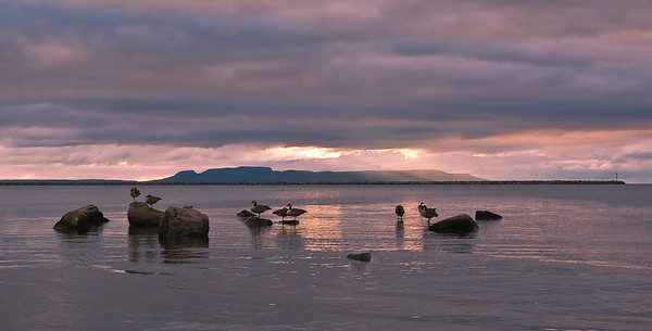 Early monring Sleeping Giant with Geese