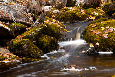 Creek near Clearwater Lake