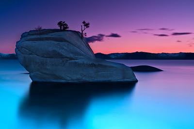 Bonsai Rock