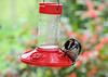 "<div class=""jaDesc""> <h4>Male Hairy Woodpecker at Hummingbird Feeder #4 - September 10, 2018</h4> <p>He stayed on the feeder for several minutes.</p></div>"