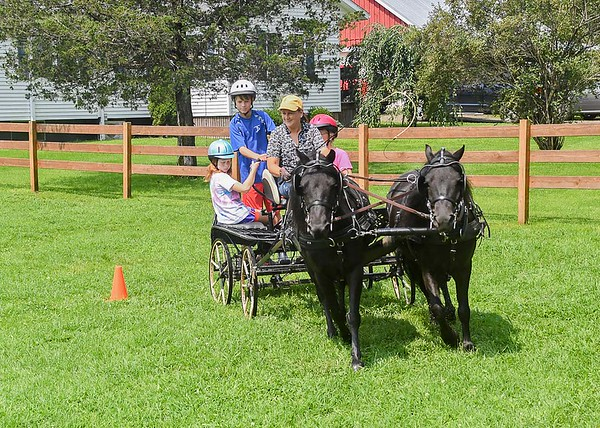 """<div class=""""jaDesc""""> <h4>Carriage Ride - Turning Right - August 26, 2018</h4> <p>Melody, Shadow, and Moor took Lynn and our grandchildren for a carriage ride.</p></div>"""
