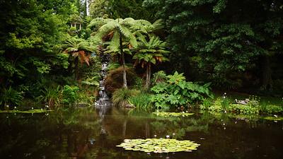 Ayrlies Garden near Auckland