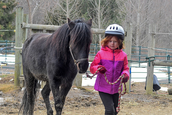 """<div class=""""jaDesc""""> <h4>Leora Leading Love - March 27, 2018</h4> <p>Love and Moor came to our place for a visit while our grand daughters were visiting.  6 year old Leora is leading Love up to the barn.</p></div>"""