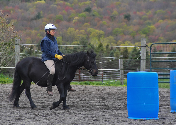"""<div class=""""jaDesc""""> <h4>Love Approaching Barrels - May 9, 2017</h4> <p>Love has very little experience being ridden.  Lynn is riding her bareback to avoid the pressure of a girth at this stage of her pregnancy.  The whip is for gentle go forward signals only as she learns leg cues.  She already knew whip cues from learning to pull a cart.</p> </div>"""