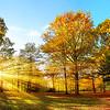 Idyllischer Naturpark im Herbst bei Sonnenschein