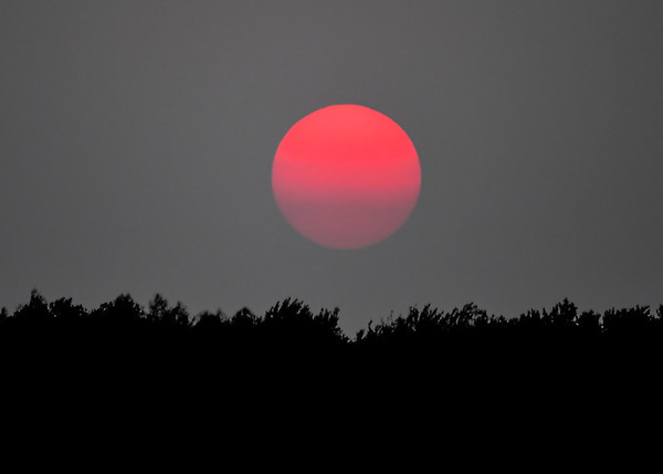"""<div class=""""jaDesc""""> <h4> Vivid Red Sunset - September 4, 2017</h4> <p>Not sure we have ever seen a sunset as vivid red as this one.  I caught it moving through a haze layer on the horizon.</p> </div>"""