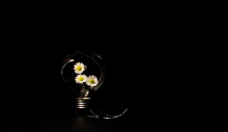 alternative light