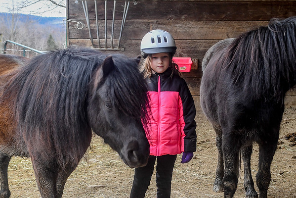 """<div class=""""jaDesc""""> <h4>Moor Likes Delia - March 27, 2018</h4> <p>Delia rode Moor.  He likes her and chose to hang out with her after the riding was over.</p></div>"""