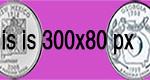 300x80 jpg