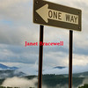 One Way on a Foggy Mountain Raod