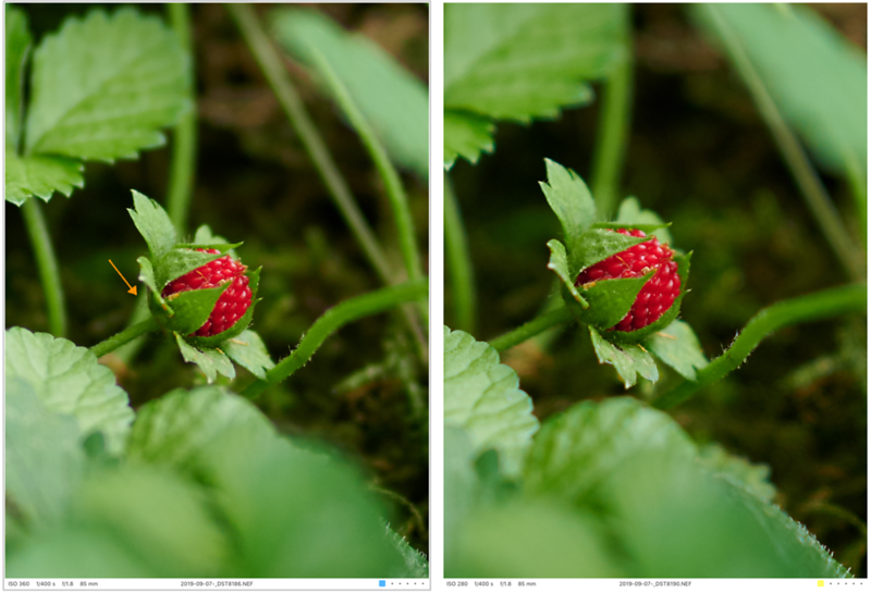 visible hair behind the strawberry: maybe just missed focus