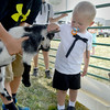 Katie Smith | Effingham Daily News <br /> Logan Wright, 3, pets a baby goat at a petting zoo set up for the Teutopolis 175 Anniversary Celebration Friday, August 1 east of Teutopolis Grade School.