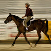 More fun with motion blur; John Crandell trots into the stadium to finish first, they both look great.  (96448)
