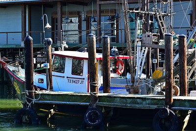 Galveston_Super-Moon_Shrimper_D75_1026