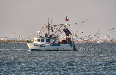 09292017_TX_City_Dike_Baby_Bear_Shrimper_HDR_500_2397A