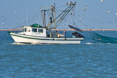 09292017_Texas_City_Dike_Shrimper_Nets-out_500_2280