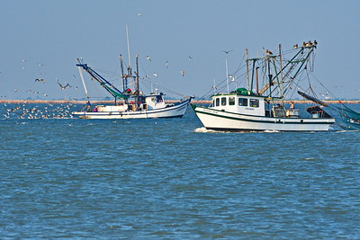 09292017_Texas_City_Dike_2-Shrimpers_500_2281