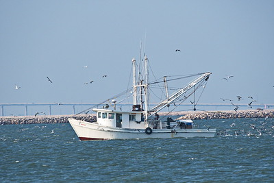 09292017_Texas_City_Dike_Shrimper_500_2272
