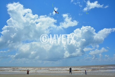 Let's Go Fly A Kite in Galveston