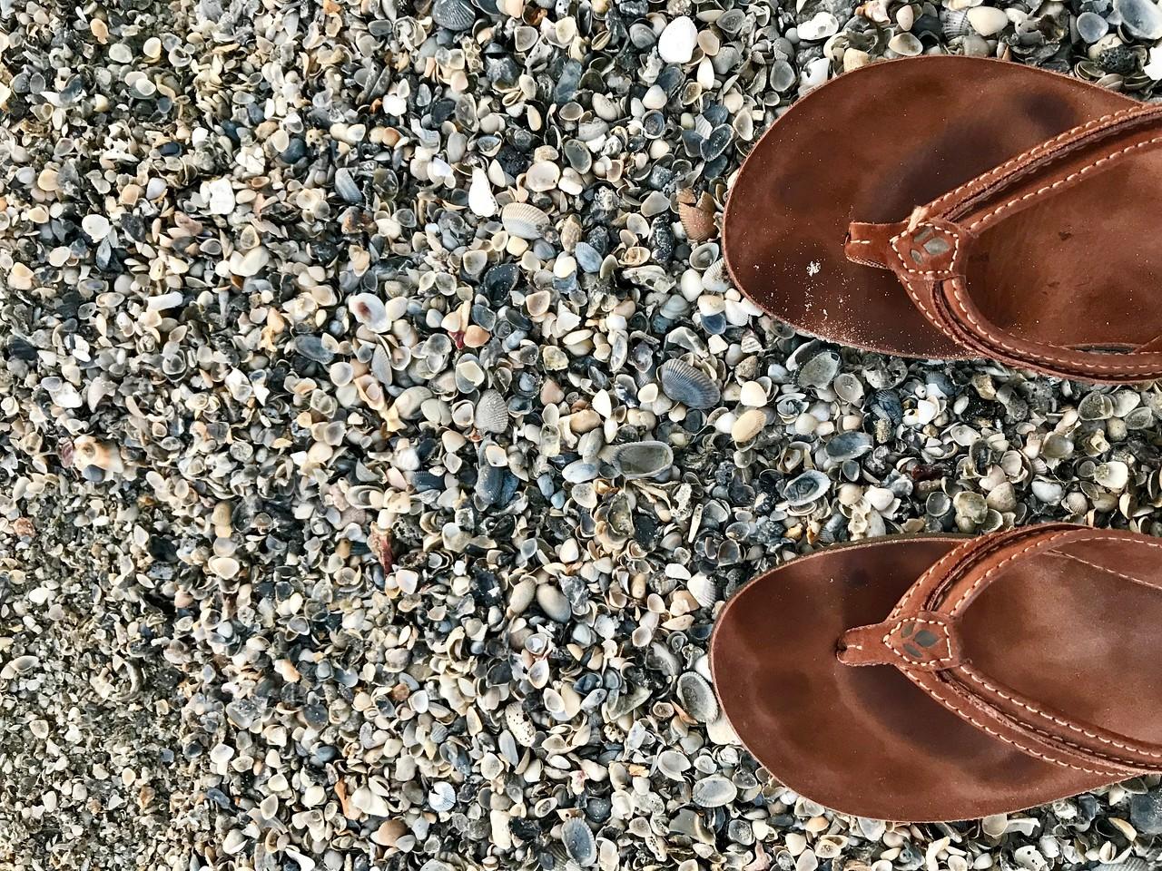 Flip flops on shells