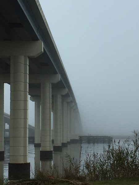 Under the Bridge in the fog