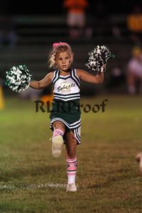 Blum HS Half Time Cheer Oct 11, 2013 (26)