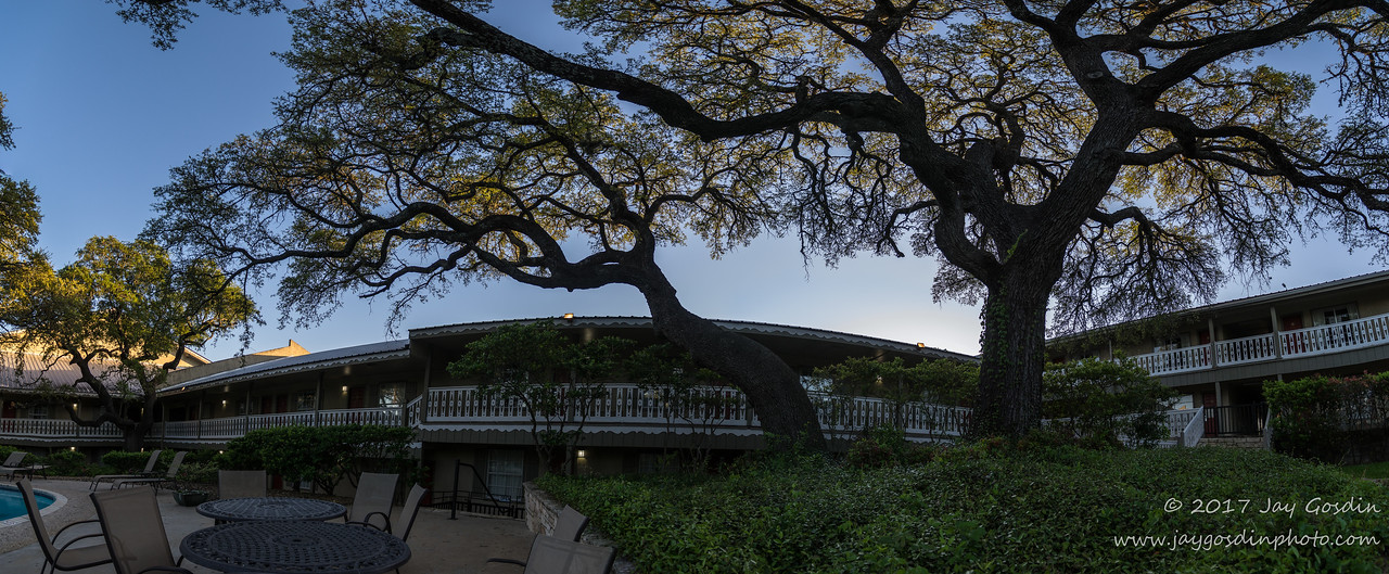Kerrville, TX Oak Tree at hotel pool
