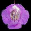 Plateau false foxglove