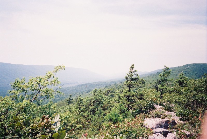 This looks to the southwest at Rich Mountain from Black Fork Mountain.  It should give you an idea of what the terrain looks like in the area.