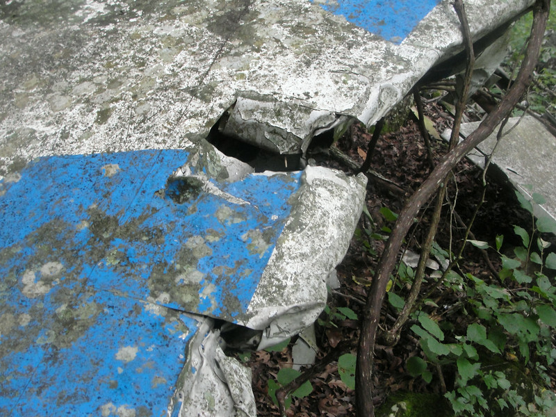 Damage to the leading edge of the vertical stabilizer.