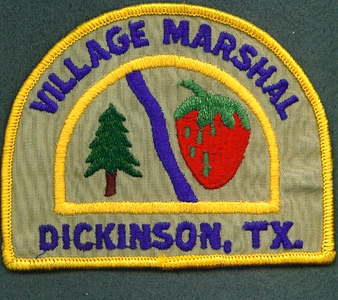 DICKINSON 1 MARSHAL