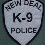 NEW DEAL 30 K-9